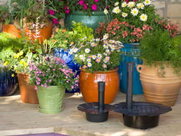 What do you think of self watering containers?